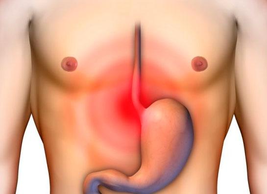 GastroPanel_test